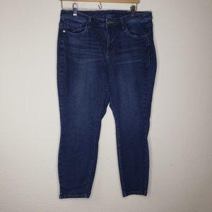 Lane Bryant Dark Blue Skinny Jeans